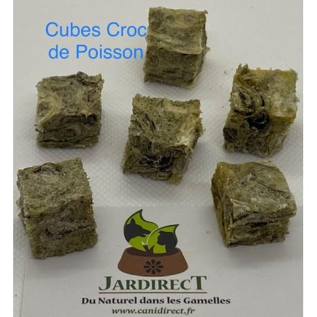 Cubes Croc Poisson