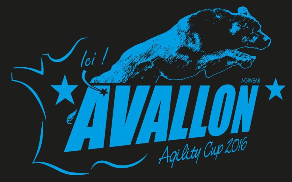 Avallon Cup 2016