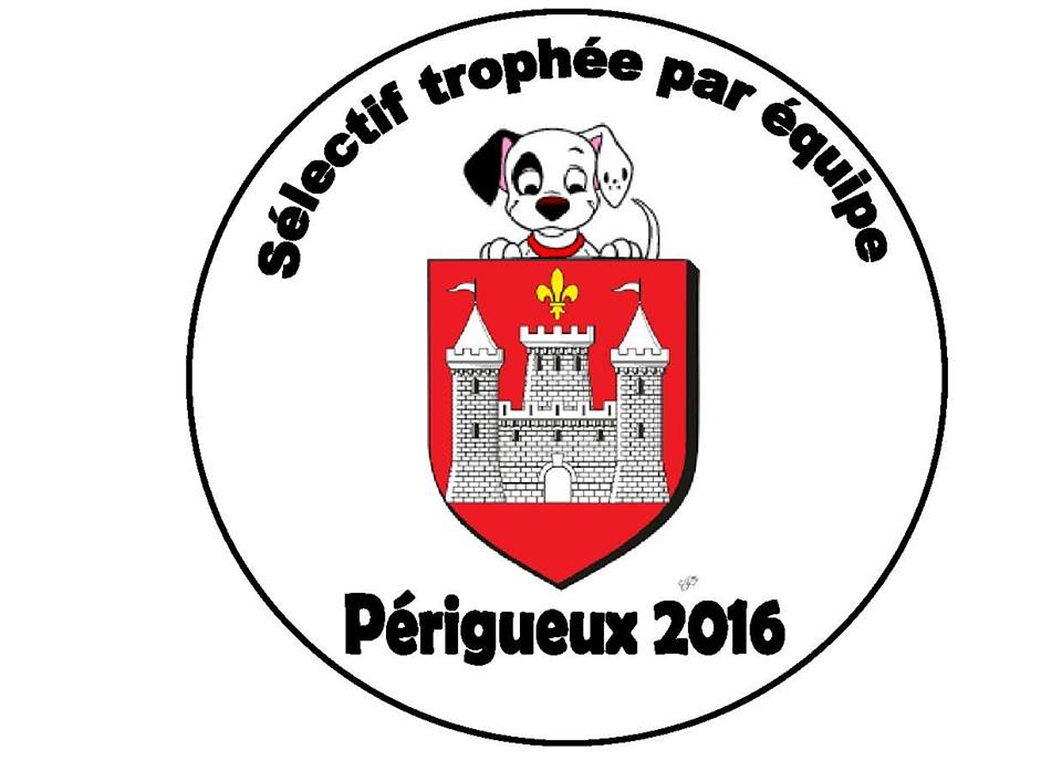 Sélectif Trophée par Equipes 2016 Périgueux